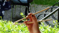 Palillos chinos y palillos de dientes hechos en China: ¿son realmente higiénicos?