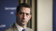 Senador Cotton pide al DOJ que presente cargos contra 'vigilantes de la mafia' que derriban estatuas