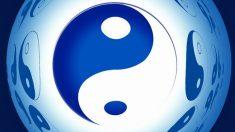 Yin y Yang del ciclo menstrual