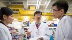El régimen chino destruyó la evidencia sobre el brote inicial del virus, dice científico de Hong Kong