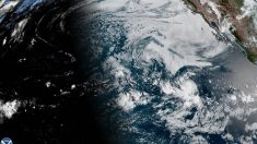 Al Descubierto: Tormenta tropical Gonzalo puede convertirse en huracán