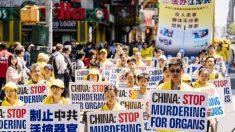 En el 21 aniversario de la persecución del Partido Comunista Chino a Falun Dafa