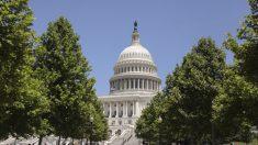 Rep. Davis pide abrir el Capitolio a visitantes y afirma que demócratas lo están bloqueando