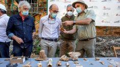 Hallan evidencia de presencia humana en Atapuerca desde 1.2 millones de años