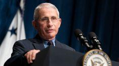 """Fauci dice que no es necesario otro cierre si todo EE.UU. sigue """"cinco o seis medidas fundamentales"""""""