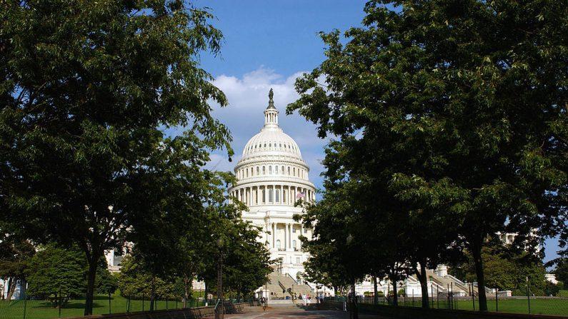 El Capitolio de Estados Unidos se muestra el 5 de junio de 2003, en Washington, DC. (Stefan Zaklin/Getty Images)