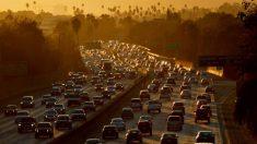 Organismo de control de la EPA revisará reversión normativa de Trump sobre emisiones de vehículos
