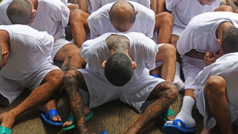Los reclusos, miembros de las bandas MS-13 y Barrio 18, esperan su llegada a la prisión de máxima seguridad de Zacatecoluca, a 65 kilómetros al este de San Salvador (El Salvador), el 9 de agosto de 2017. (MARVIN RECINOS/AFP a través de Getty Images)