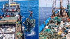 Limpieza masiva del Océano Pacífico marca récord, recoge más de 100 toneladas de desechos plásticos