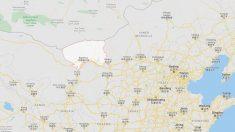 La OMS sigue de cerca el caso de peste bubónica en la provincia china de Mongolia Interior