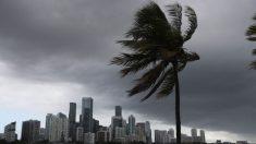 """Jefe de la FEMA advierte a floridanos que se preparen para Isaías: """"No apuesten por su seguridad"""""""