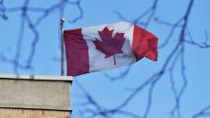 Condenan a muerte a segundo canadiense en China en 2 días por elaborar drogas