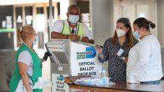 Voto por correo y anticipado supera 1.8 millones para primarias de Florida
