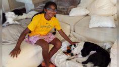 Niña de 14 años adoptada ayuda a perros ancianos a encontrar un hogar como ella lo hizo