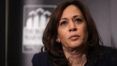 """Joe Biden elige a la senadora Kamala Harris como su vicepresidente, dice que es un """"gran honor"""""""