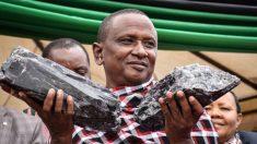 Agricultor africano desentierra una millonaria piedra preciosa gigante azul violeta… ¡otra vez!