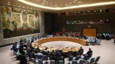 ONU no aprueba la extensión del embargo de armas contra Irán