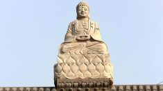 Las penurias y recompensas de una piedra para transformarse en una estatua de Buda