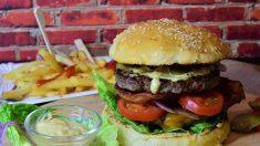 Una dieta alta en grasas y los antibióticos podrían aumentar el riesgo sufrir una pre-EII