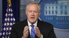 La Casa Blanca no cuestiona si Harris es apta para postularse a vicepresidente, dice Meadows