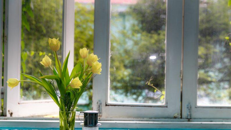 Pocas cosas pueden mejorar la percepción de una habitación tan rápida y efectivamente como una ventana abierta. Imagen ilustrativa. (Quang_Nguyen_Vinh/Pexels)