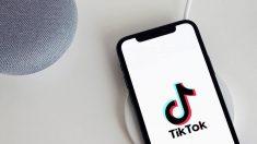 TikTok se defiende de los dichos de Trump sobre prohibir la plataforma