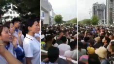 Mongolia Interior: Autoridades reprimen las protestas mientras residentes rechazan la enseñanza del mandarín
