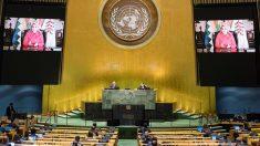"""Bolivia denuncia en la ONU un """"acoso sistemático"""" por parte de Argentina"""