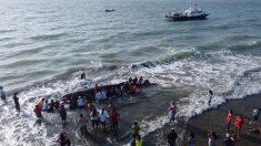 Rescatan a una ballena jorobada varada en isla cerca de Guayaquil