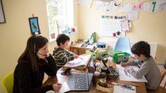 Respuestas al llamado de la educación en el hogar