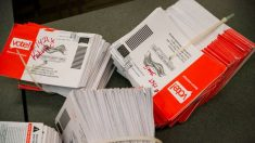 Arrestan a hombre de Florida luego de solicitar una boleta de voto por correo para su esposa fallecida
