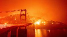 Separar la realidad de la ficción sobre los incendios forestales
