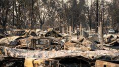 Los rumores sobre Antifa provocando incendios forestales son falsos, dicen las autoridades