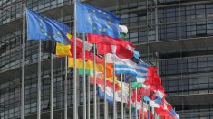 """La UE adopta """"histórico"""" régimen de sanciones globales sobre DD.HH. basado en Ley Magnitsky"""