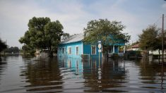 """Declaran estado de emergencia y movilizan a Guardia Nacional por """"grandes inundaciones"""" en Kentucky"""