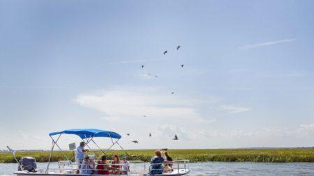 Isla de Edisto: unas vacaciones para todos
