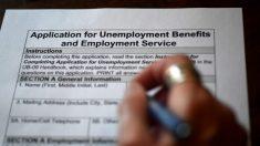 Miles en Lousiana recibieron avisos de sobrepago de miles de dólares por beneficios de desempleo