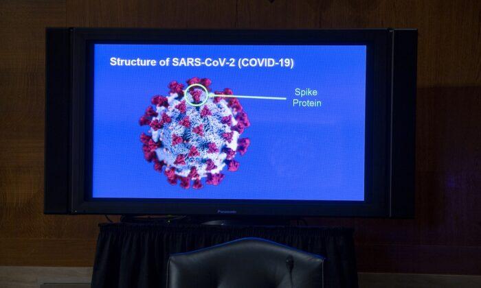 Un monitor muestra la estructura del SARS-CoV-2 durante una audiencia en Washington el 9 de septiembre de 2020. (Michael Reynolds- Pool vía Getty Images)