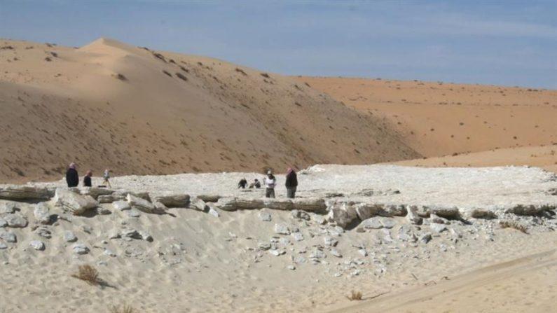 Imagen cedida por Palaeodeserts Project del lago Alathar, situado en una depresión interdunal del desierto occidental de Nefud, Arabia Saudita. EFE