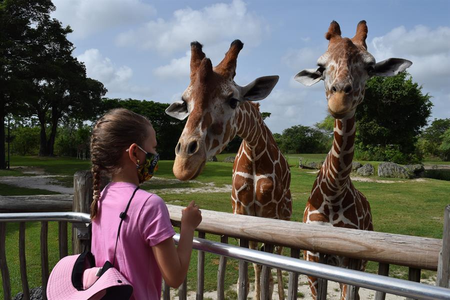 Zoológico de Miami ofrece visita privada a niña con cáncer que pidió un  deseo | Niña | Cáncer | zoológico | LA GRAN ÉPOCA