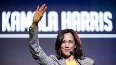 Kamala Harris promovió un fondo de ayuda para liberar a un hombre que agredió sexualmente a una niña