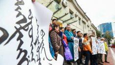 Cientos de perseguidos y 2 muertos en represión del PCCh a las protestas en Mongolia interior