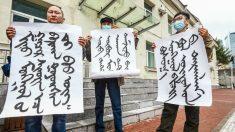 Decenas de miles en Mongolia Interior peticionan contra el impulso de Beijing de erradicar su idioma