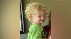 Niño de 2 años desaparece en un vecindario de Idaho y se inicia una búsqueda masiva