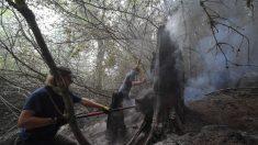 Vecinos y bomberos se unen para proteger sus casas de los incendios forestales de Oregón