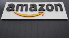 Detienen a mujer en EE.UU. que estafó a Amazon con mañoso sistema de etiquetas