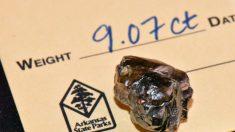 Hombre encuentra diamante de 9 quilates en Parque de Arkansas, el segundo más grande del lugar