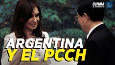 China al Descubierto: Cerdos mueren de peste porcina en China; Los vínculos entre Argentina y el PCCh