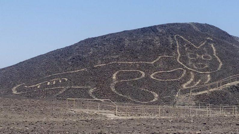 Fotografía cedida el 16 de octubre de 2020 por el Ministerio de Cultura de Perú, de la figura de un gato de unos 37 metros de largo reposando sobre una colina arenosa en la Pampa de Nazca (Perú). EFE/Ministerio de Cultura