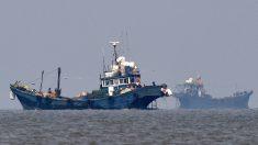"""Flota china se acerca a Argentina en su ruta de """"saqueo"""" de especies marinas"""